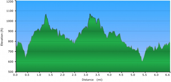 Elevation Profile - Thornton Ramble